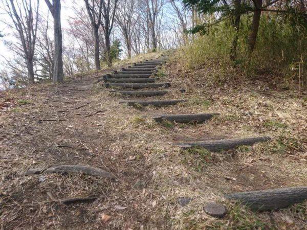 紫山公園|林道