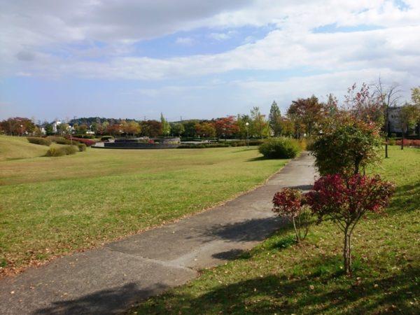 紫山公園|芝生広場1